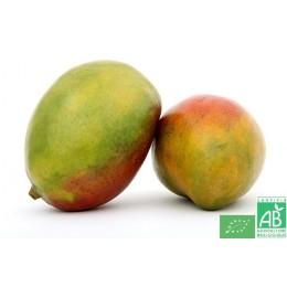Mangue, 1 pièce, Espagne