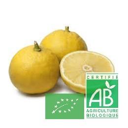 Citron bergamote 500g Italie