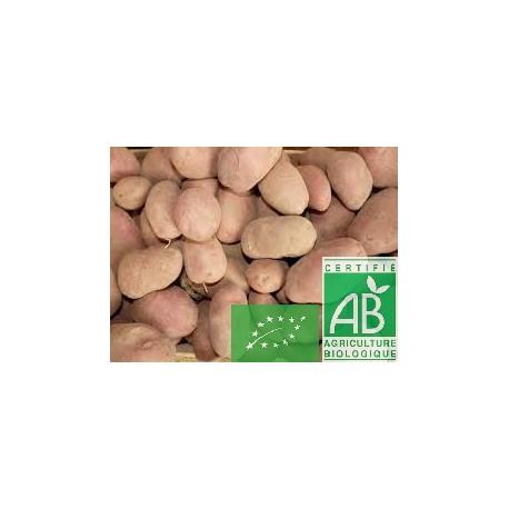 Pommes de terre tendre