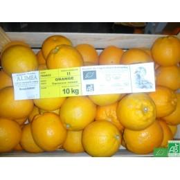 Orange Tarocco de Corse / 1kg