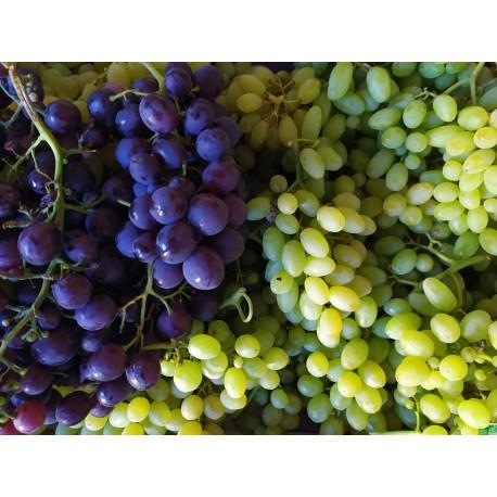 Raisin blanc Danlas 3 Kg, Loir et Cher