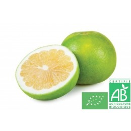 Pomelos sweetie, 1 pièce, Italie, environ 450g