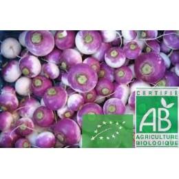 Navet violet, France, 500g