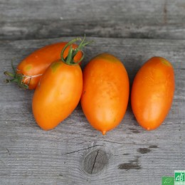 Tomates allongée orange, 500g, France