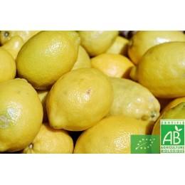 Citron 500g Italie