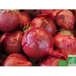 Oignons rouges 500g Anjou