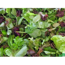 Mesclun asiatique, Touraine, 200g