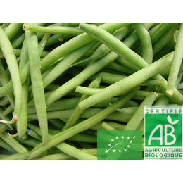 Haricots verts, France, 500g