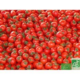 Tomates Rondes, Anjou, 500g