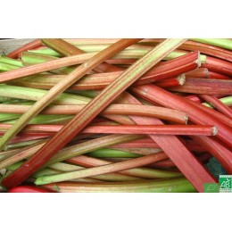 Rhubarbe 500g Touraine