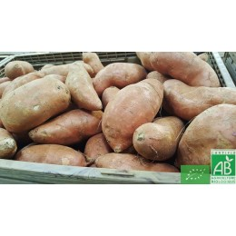 Patates douces, 1kg, Touraine