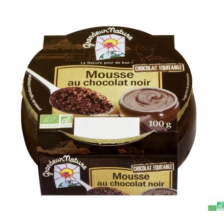 Mousse au chocolat noir grandeur nature