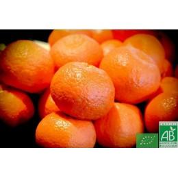 Mandarines, Italie, 500g