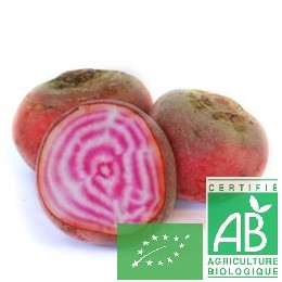 Betteraves chioggia, 500g, Montlouis