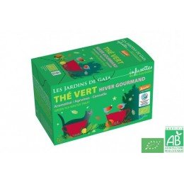 Infusettes the vert aromatise hiver gourmand les j