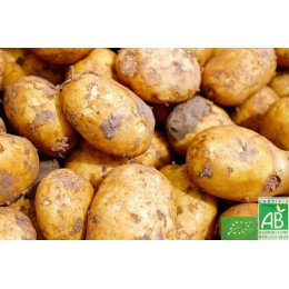 Pommes de terre bintje, Anjou, 1 Kg