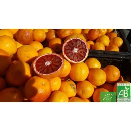 Orange sanguine , 1 Kg , Italie