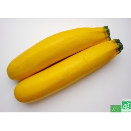 Courgette jaune, 500g, Anjou