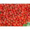 Tomates Rondes Touraine 500g